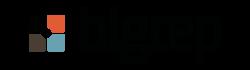 BigRep-Logo