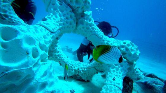 3d-printed-coral-reef